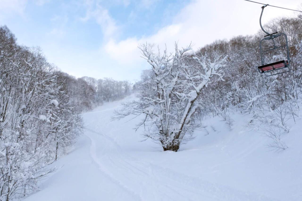 かもい岳スキー場|代継ぎの桂