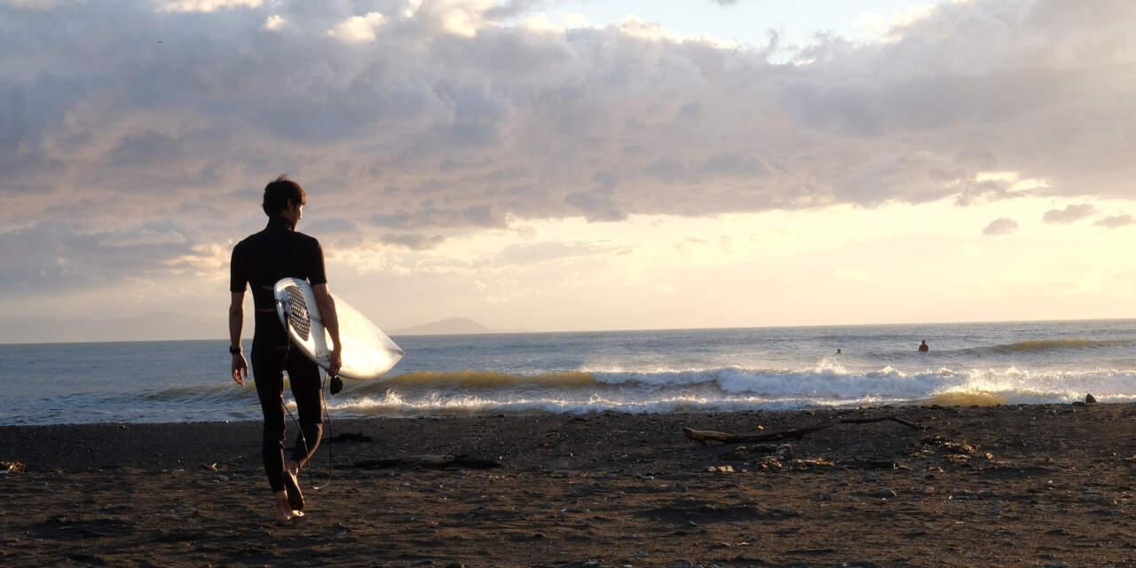 シーガルを着るサーファーの画像