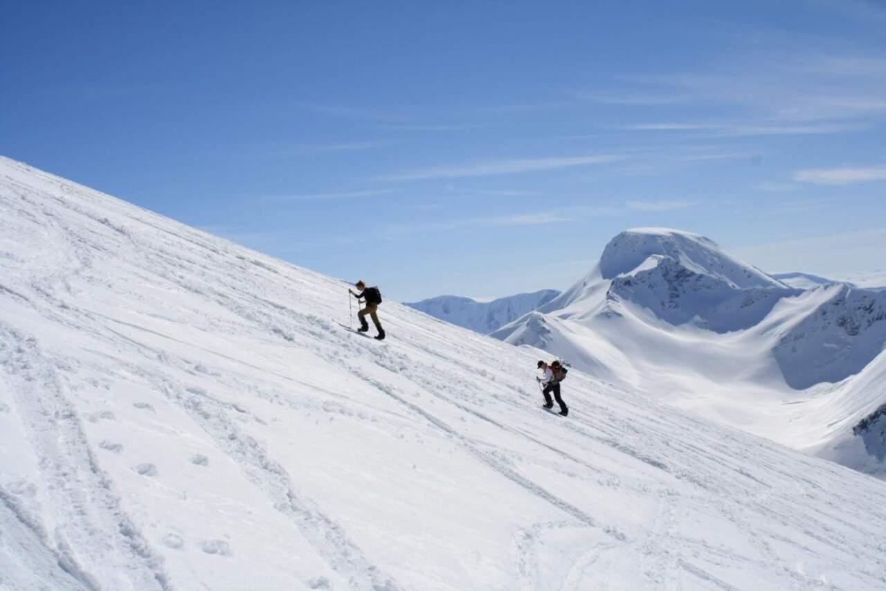 ノルウェーの山 fjell snowboards