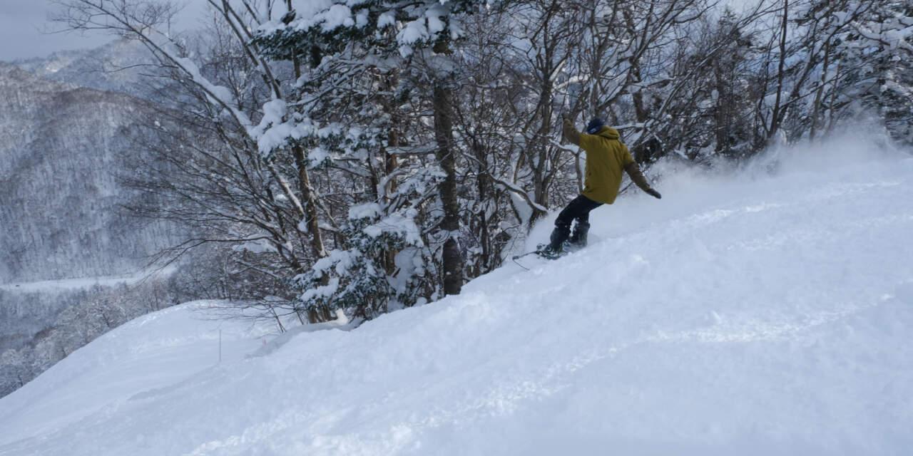 桂沢国設スキー場|ピンクコース