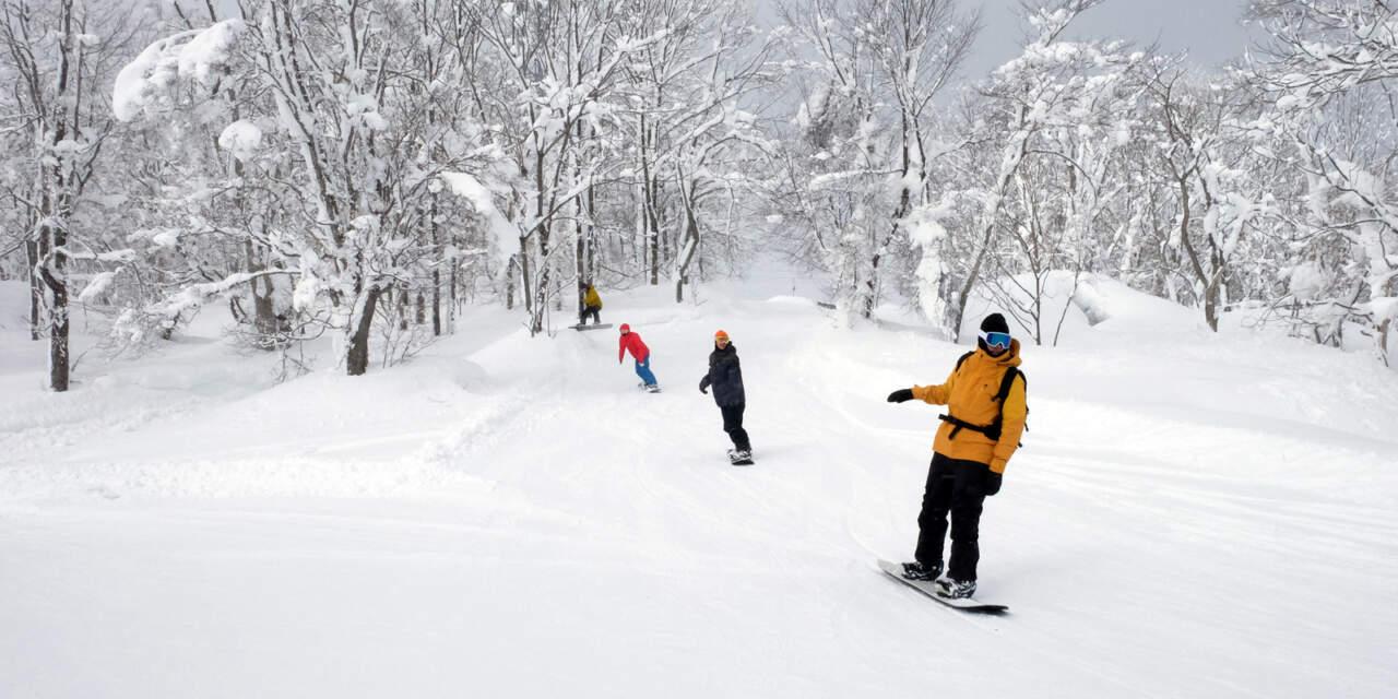 かもい岳スキー場|東西をつなぐコース