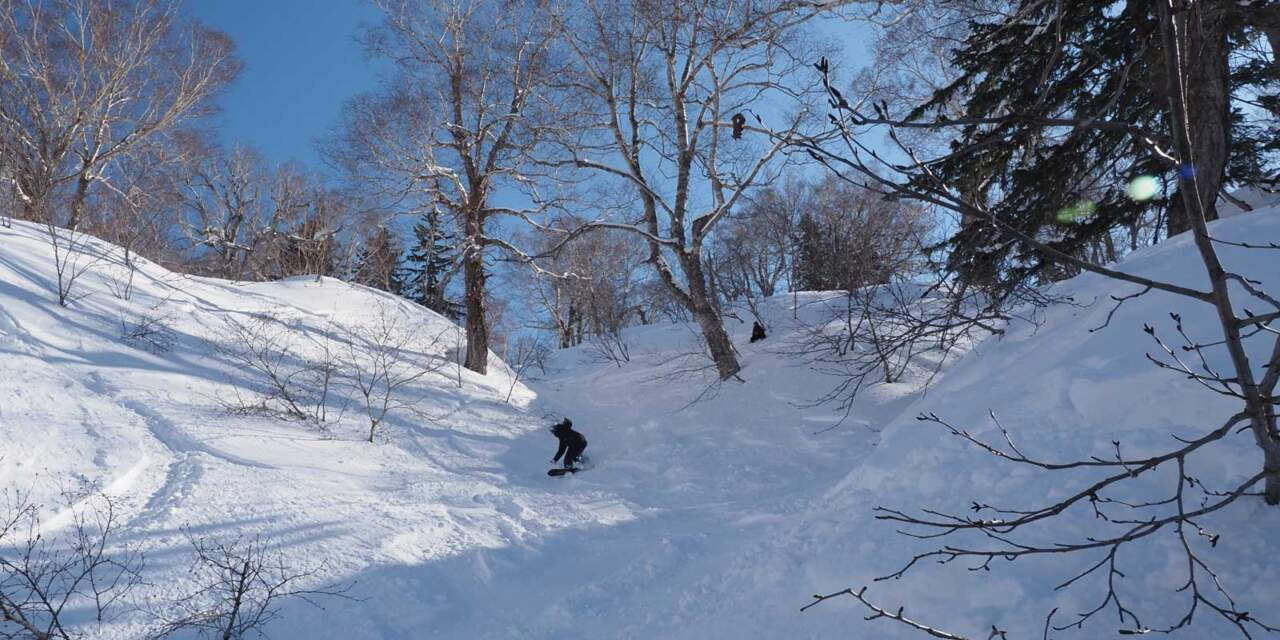北海道の3月のパウダー