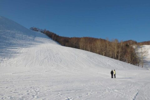 WOODYPRESS|CARVEのサイズ選びと練習のポイント