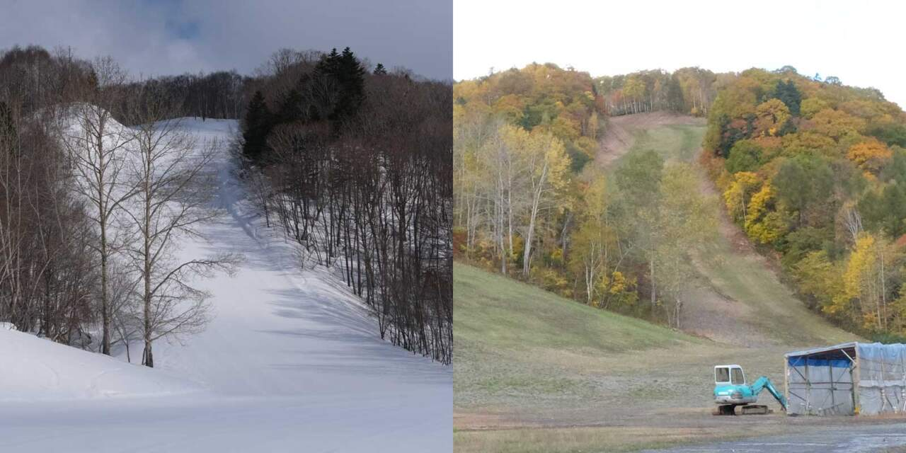 ほろたちスキー場 林間コース